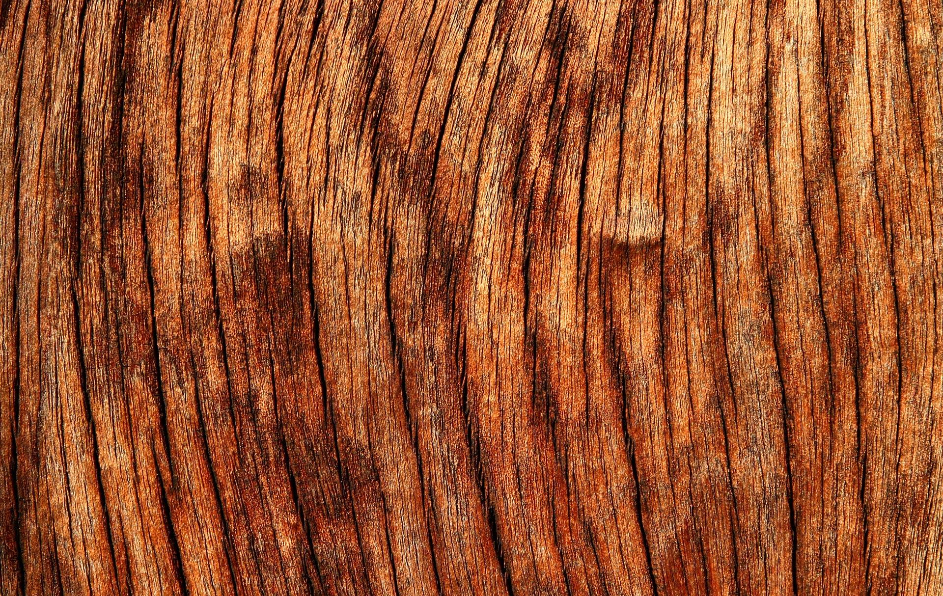 wood-texas-bbq